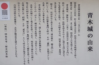 innosima 04.jpg