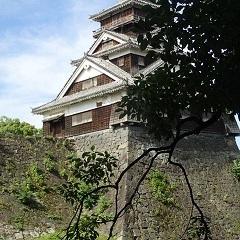 kumamotozyo 03.jpg