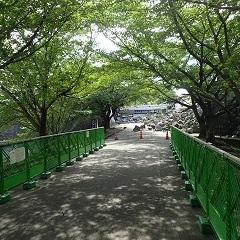 kumamotozyo 05.jpg