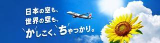lcc air.jpg