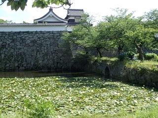 fukuokazyo 05.jpg