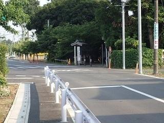 hikawairiguti66.jpg