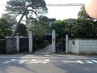 tazimakaiko66.jpg
